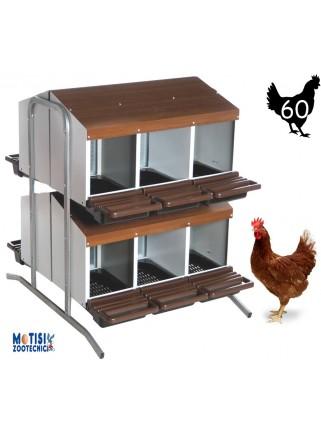 Nido per galline modello Spagna con 12 scomparti a batteria